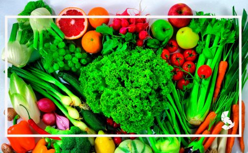 Podcast Atletas Vegetarianos e Veganos
