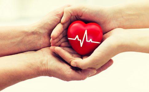 Mindfulness e Saúde você pode curar a si mesmo